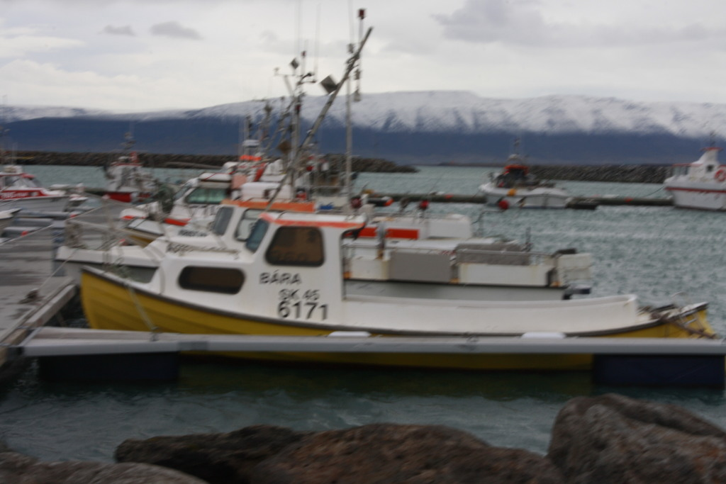 Ljósmynd: Sigurður Bergþórsson