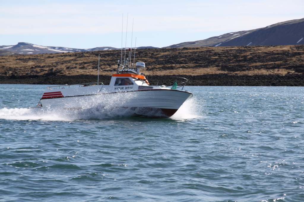 Ljósmynd: Þorgeir Guðmundsson