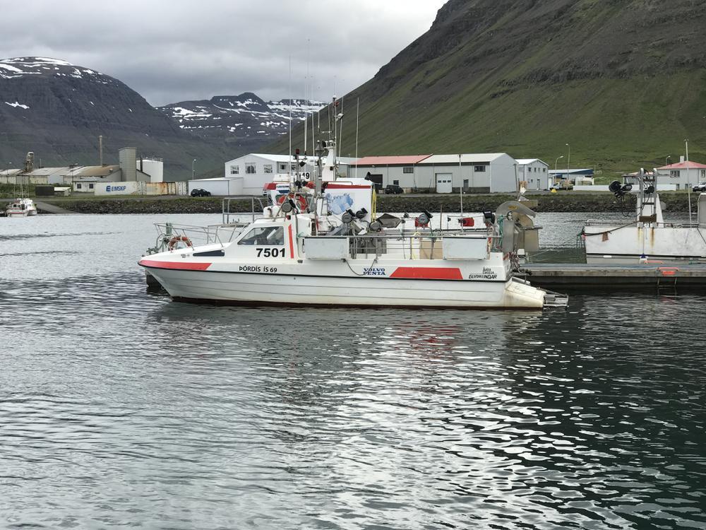 Ljósmynd: Hálfdán Daðason