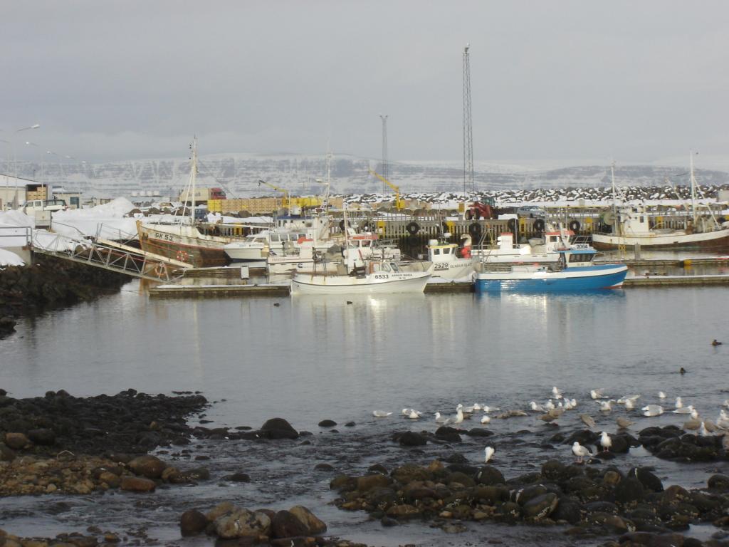 Ljósmynd: Guðjón Magnússon